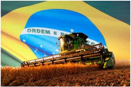 cultivos-brasil