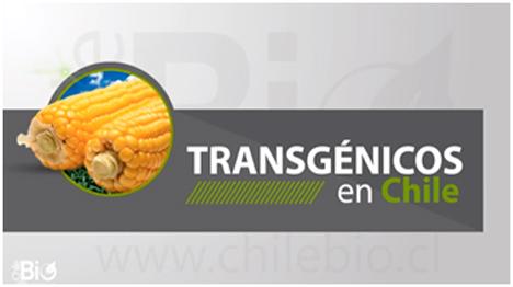 trans-en-chile