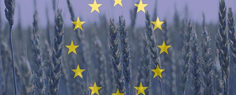 normativa-europea