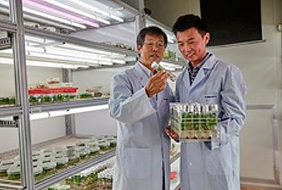 cientiicos-coreanos