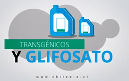 transgenicos-y-glifosato