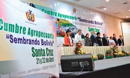 gobierno-de-bolivia