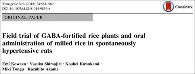 arroz-fortificado