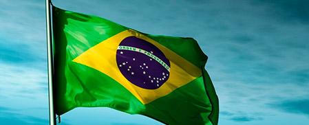 brasil-transgenicos