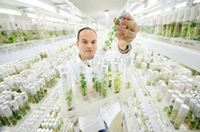 productos-biotecnológicos