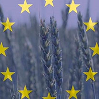 Medio-Ambiente-del-Parlamento-Europeo