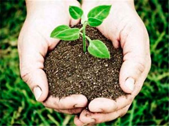 sustentabilidad-y-beneficios-ambientales