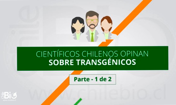 video-cientificos