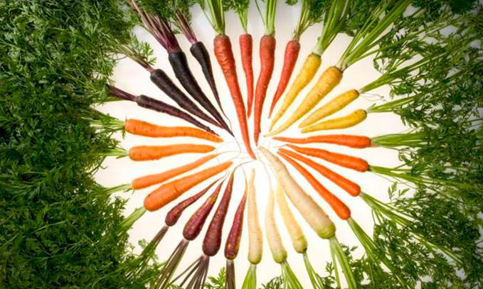 descifran-el-genoma-de-zanahoria