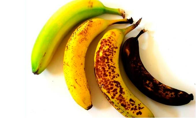 Científicos-desarrollan-plátanos-genéticamente-modificados-con-vida-útil-más-larga