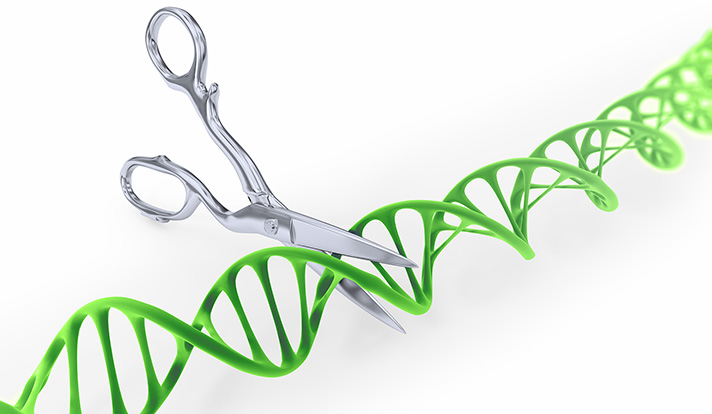 DNA strand cut with scissors - Gene editing conceptual illustration