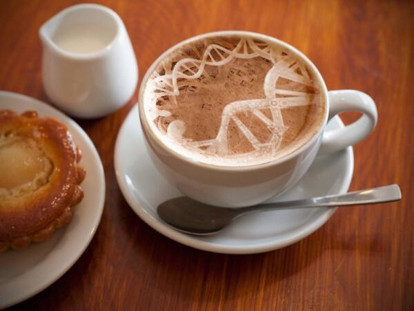secuencian genoma de cafe